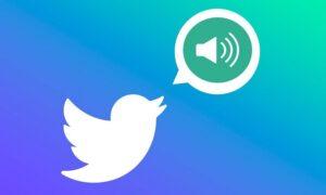 Twitter'a Sesli DM Özelliği Geliyor