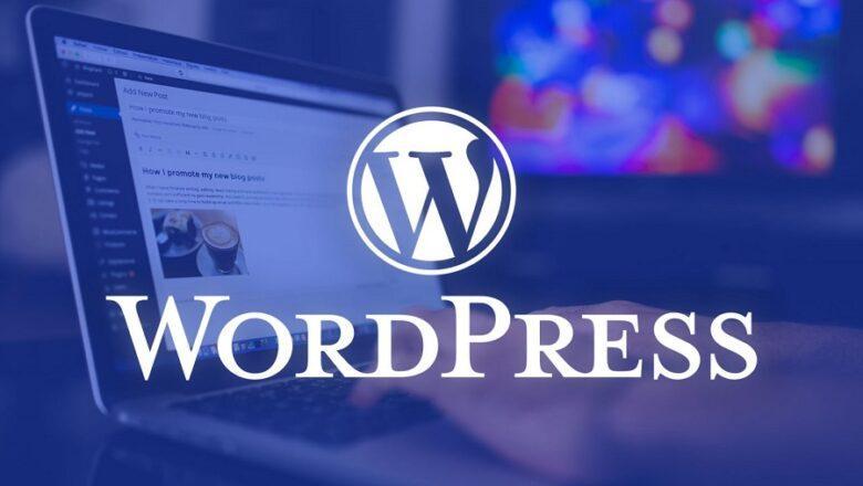WordPress Nedir, Ne İşe Yarar ?